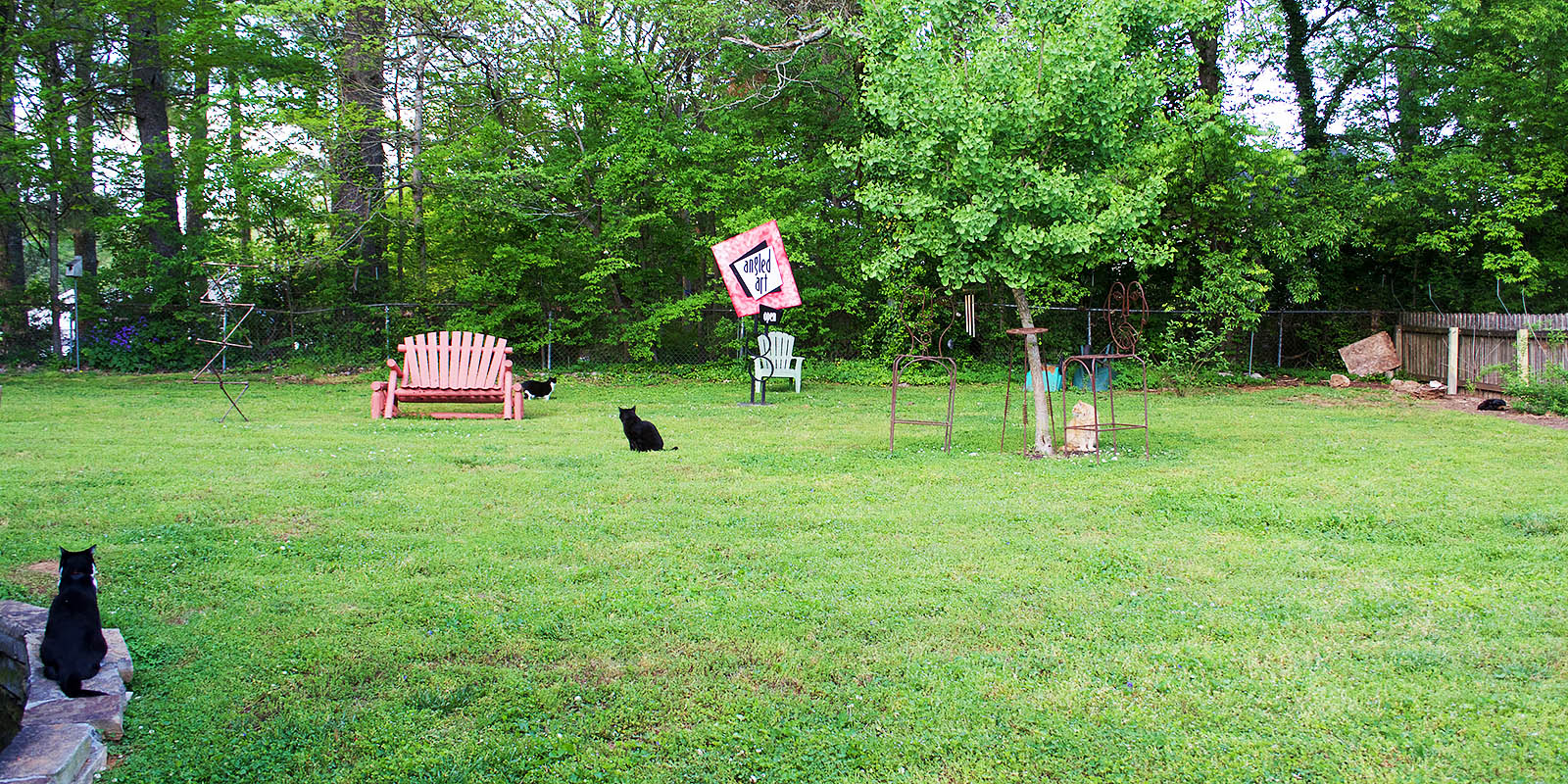 House Sit #12 – Chattanooga, TN